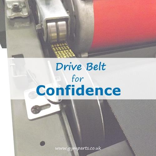 Confidence Fitness Drive Belt