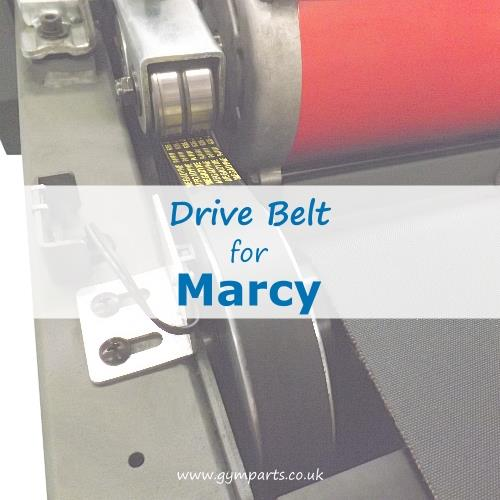Marcy Drive Belt