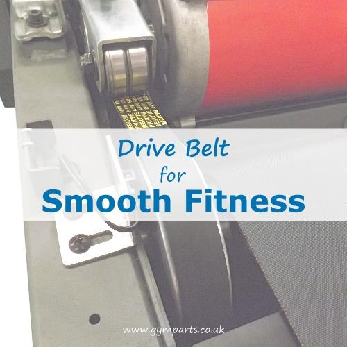 Smooth Fitness Drive Belt