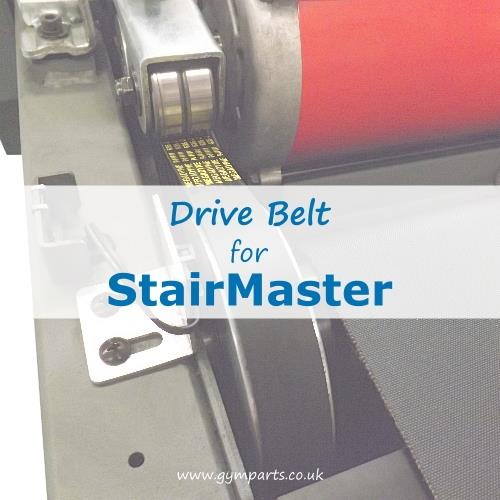 StairMaster Drive Belt