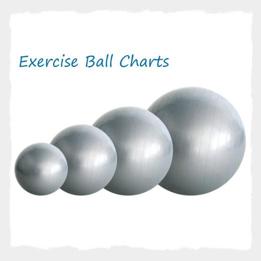 Exercise Ball Poster Charts