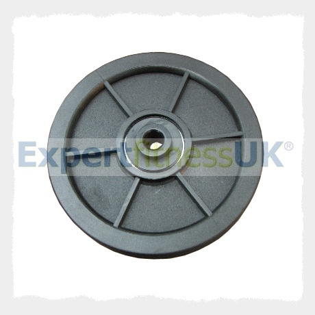 Gym Grade 120mm Nylon Pulley Wheel